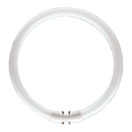 Circular Lamps の画像