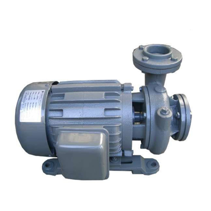 Picture of Close-Coupled Vortex Centrifugal Pump CP-21.5