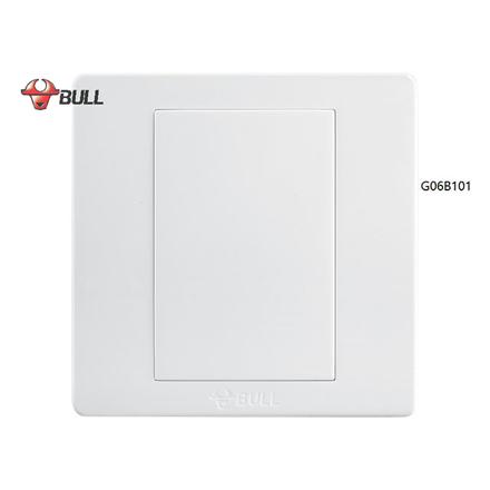 Bull Blank Plate (White), G06B101 の画像