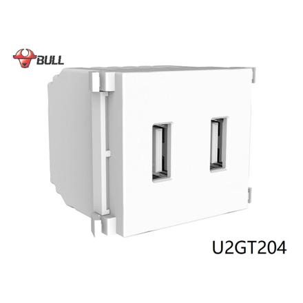 Bull 2 Gang USB Outlet (White), U2GT204 の画像